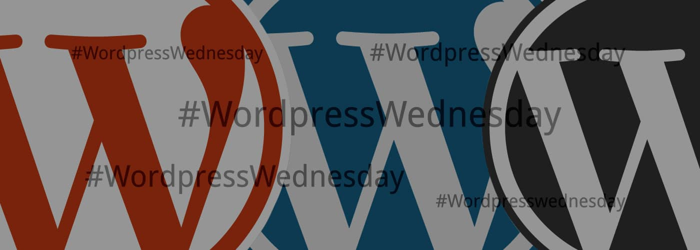 Premium WordPress Themes: Must-Haves En Onnodige Extra's